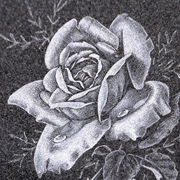 hand etchings rose